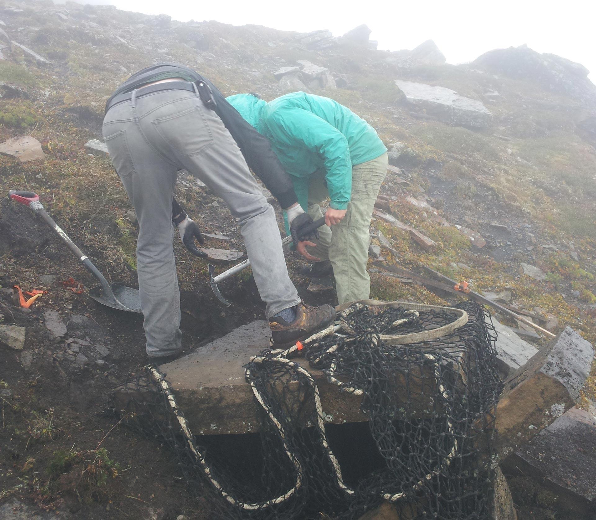 Removing Lichen